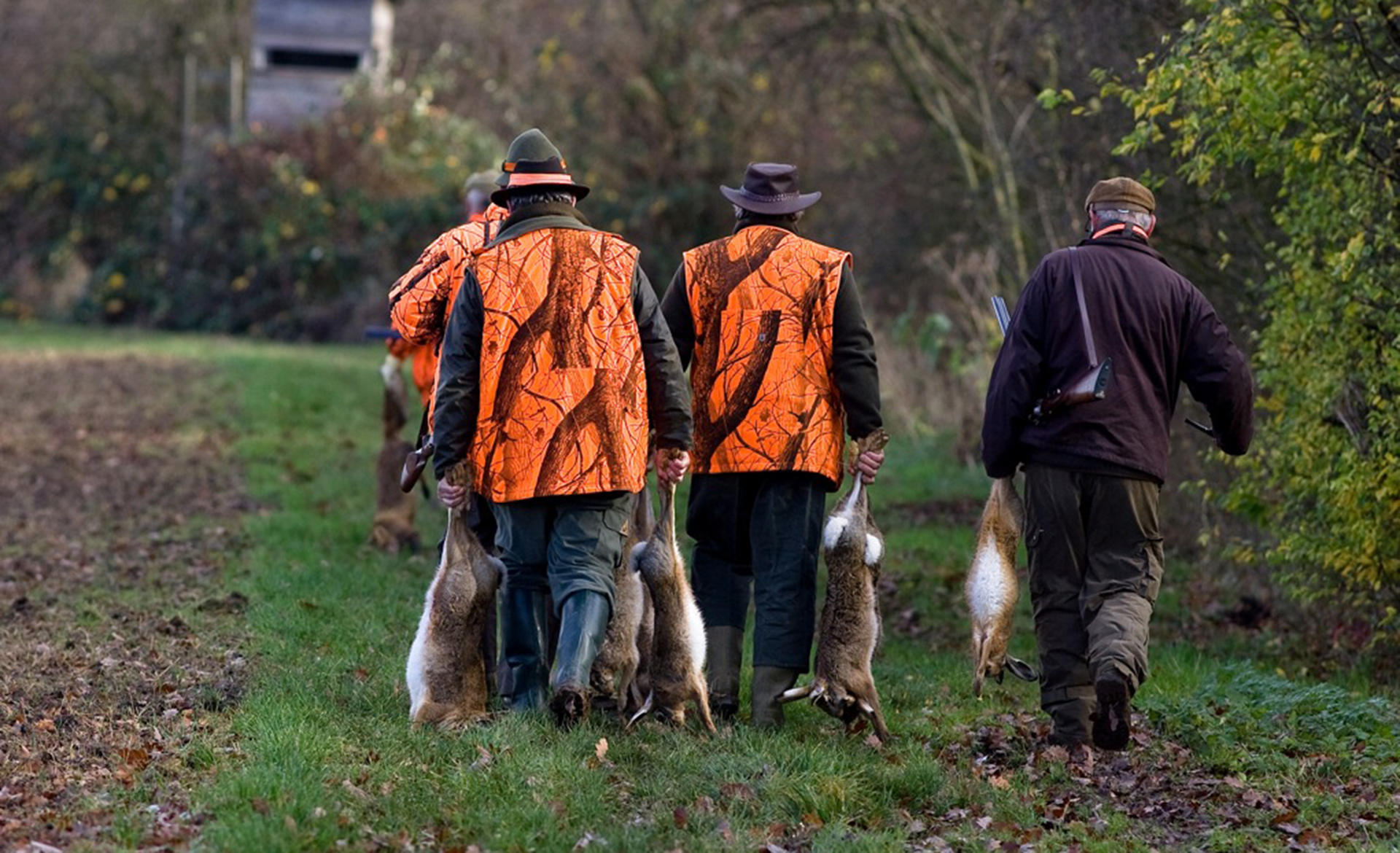 formation-chasse